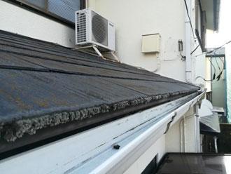 藻が発生しているスレート屋根