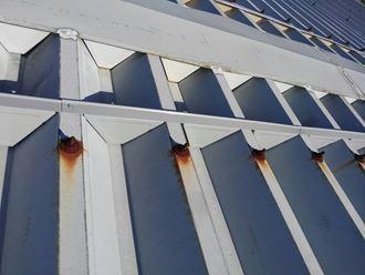 折板屋根の耐久性