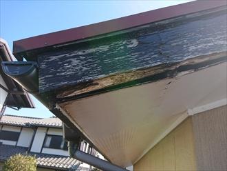 下屋根に上がらせて頂き調査