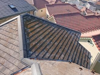日当たりの良し悪し関係なく屋根全体が苔とカビに覆われている