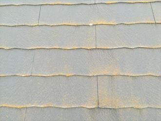 色褪せて苔の発生したスレート屋根