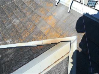 表面の塗膜が劣化して苔の繁殖したスレート屋根