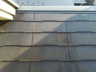 苔の繁殖が目立つスレート屋根