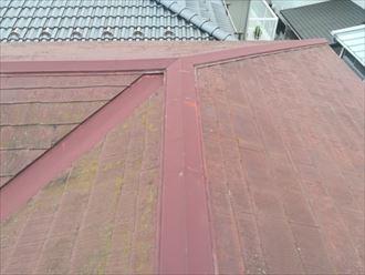 日当たりの悪いスレート屋根面に多く繁殖した苔やカビ