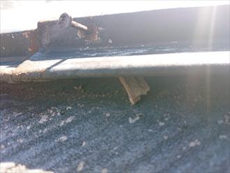 貫板が腐食しています