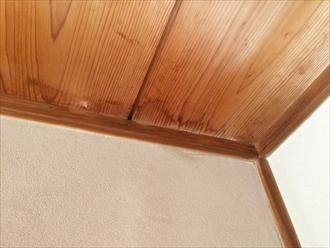 天井板にも染み出ている雨漏り