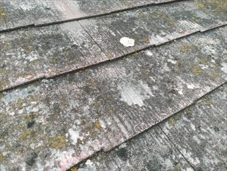 劣化した塗膜と傷んだスレート材