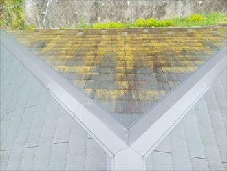 木々のある面だけに藻や苔が繁殖したスレート屋根