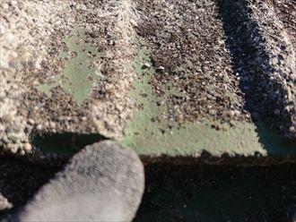 塗装が劣化して剥がれが起きたセメント瓦表面