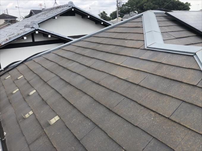 レサスの屋根