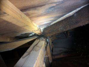 屋根裏から見た雨漏り