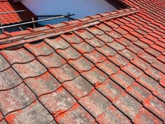 屋根の塗膜が剥がれている