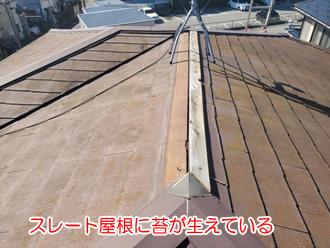 スレート屋根に苔が生えている