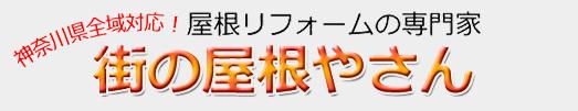 sp_foot_logo